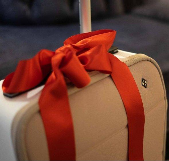 Kabuto Luggage Review 1